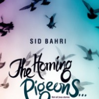 Sid Bahri (The Homing Pigeons)