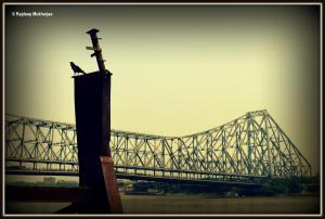Image Courtesy: Rajdeep Mukherjee