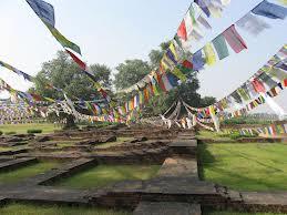 Lumbini Garden. Image Courtesy: Google