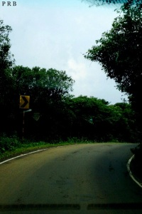The road that is lost in the forest, towards Arthur's Seat, Mahabaleshwar